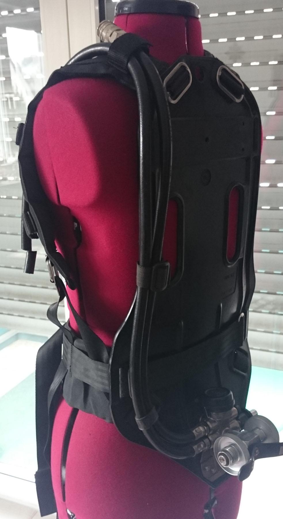 Flügel-Grundplatte, Rückenansicht